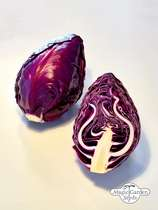 Red pointed cabbage (Brassica oleracea var. capitata) - bulk quantity (10g / approx. 2000 seeds) #2