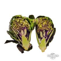 Purple Brussels Sprouts 'Red Ball' (Brassica oleracea) #3
