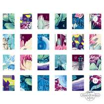 Colourful And Insect-Friendly Herbaceous Perennials, Summer Flowers And Wild Flowering Plants - Organic Seed Advent Calendar 2020 #3