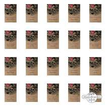'Miscellaneous Chilli peppers' seed kit gift box 20 incredible varieties #2
