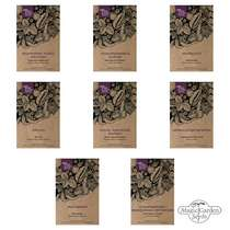 'Asian vegetable selection' seed kit gift box #2