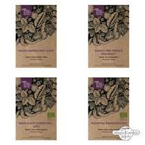 Colourful Radishes All Year Round - Seed kit gift box #2