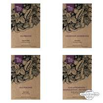 Exotic Beans - Seed kit gift box #2
