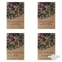 Sweet & Hardy Melons - Seed kit gift box #2