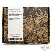 'Asparagus Varieties' seed kit gift box #1
