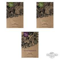 Cacti assortment - seed kit gift box #2