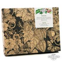 'Tropical agricultural crops: coffee, tea, rice, passion fruit & banana' seed kit gift box #2