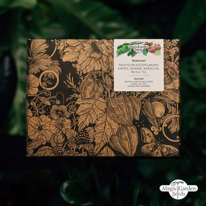 'Tropical agricultural crops: coffee, tea, rice, passion fruit & banana' seed kit gift box