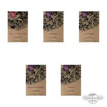 Edible Wild Plants - Seed kit gift box #4