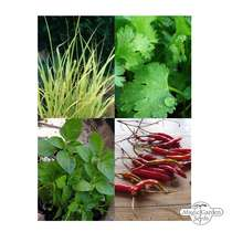 Thai Kitchen Herb Selection -Seed kit gift box #5