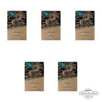 Traditional Medicinal Plants - Seed kit gift box #4
