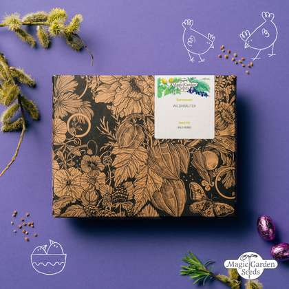 Wild herbs seed kit gift box