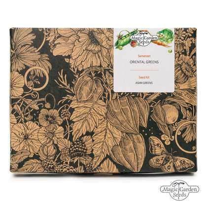 'Asian Greens' seed kit gift box with 5 oriental leafy vegetable varieties