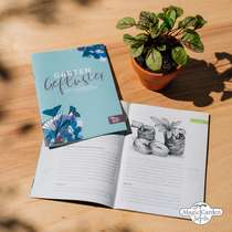 'Colourful nectar plants - organic' seed kit gift box #5