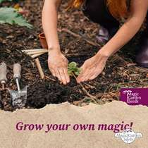 'Kitchen herbs for the window - organic' seed kit gift box #6
