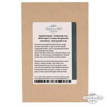 White angel's trumpet (Brugmansia suaveolens) - bulk quantity (5g / approx. 200 seeds) #5