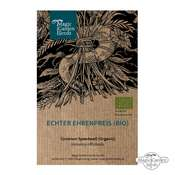 Common speedwell (Veronica officinalis) organic