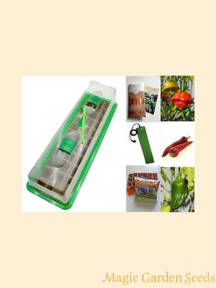 Chili cultivation set (heated):' Professional - Organic Chilli Seeds', 3 delicious chili seeds in organic quality with propagator, heating mat & sowing accessories