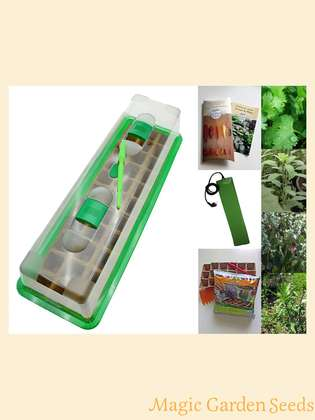 Kitchen herbs-cultivation set (heated) with propagator, heating mat & sowing accessories-' Mexican herbs', 4 different kinds of herbs of the Mexican kitchen