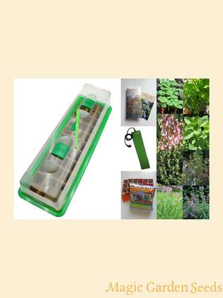 Kitchen Herb Cultivation Set (heated) with propagator, heating mat & accessories -' Italian Herbs', 4 typical herbs of the Italian kitchen