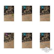 Healing Mountain Herbs - Seed kit #1
