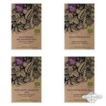 Berry Snack Garden (Organic) - Seed kit #1